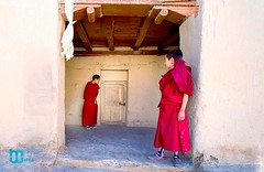 Two Monks (manuj mehta) Tags: monastery monks spiti valley incredible india people red robe buddhist tibetian young kaza kalpa himachal pradesh himalayan ranges photography lonely planet travel unexplored discover amazingshot amazing peace key dhankar gompa
