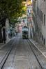 Portugal July 2017 (SRM Fotografie) Tags: photography portugal canon canoneos750d canon750d canon70200mmf4lusm canon70200mmf4l canon70200mmf4 canon70200mm canon70200 70200mmf4lusm 70200mmf4l 70200mmf4 70200mm 70200 llens canonllens holiday vacation lissabon urbex urbanexploring streetphotography beautiful europe canonphotographer dutchphotographer srmfotografie sigma sigma1750mmf28exdcoshsm sigma1750mmf28 sigma1750mm sigma1750 1750mm 1750mmf28 landscape portrait nature animals oceanáriodelisboa ocenariumlisbon ocenarium otter mountains city wedding flowers people musician music guitar guitarplayer architecture cat chandelier moon night goldenhour transport castle statue fountain bird birds street ocean water cliff houses tourism