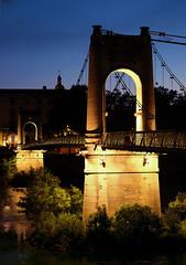 (Laetitia de Lyon) Tags: fujifilmxt10 lyon pont passerelle bridge passerelleducollege nuit night heurebleue bluehour