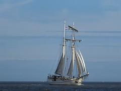 Koh-i-noor, a galjas (Alta alatis patent) Tags: kohinoor galjas sailing charter tallship waddensea