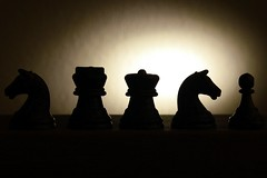 Chessmen   (explored 06/05/2017) (christikren) Tags: macro silhouette macromondays christikren chess chessmen panasonic chessmenhorse game king hmm minichess justedutalent