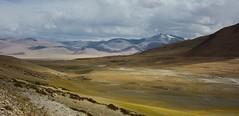 Landscape of lake Tso Kar, India 2016 (reurinkjan) Tags: india 2016 ©janreurink himachalpradesh spiti kinaur ladakh kargil jammuandkashmir tsokar laketsokar thukje rupshuplateauandvalley himalayamountains himalayamtrange himalayas landscapepicture landscape landscapescenery mountainlandscape