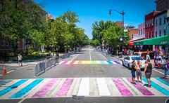 2017.06.10 Painting of #DCRainbowCrosswalks Washington, DC USA 6430