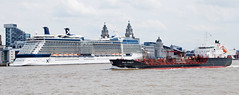 MERSEY SHIPPING : STOLT SEAGULL (tommypatto : ~ IMAGINE.) Tags: rivermersey liverpool ships shipping