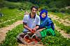 Shohel & Asma Couple @ Strawberry Field (Anwar.Shamim) Tags: starwberry red farm couple pick pickown seasonalfrits fruit fruits redfruits newburg newyork usa pickownfarm june june2017 fields