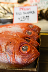 IMGP4103.jpg (PenTex) Tags: snapper buying naturalfood fillet sashimi dinner sea farmersmarket wild fishing rawfood catch fishforsale foodanddrink ice fishmarket market seafood shopping dining seattle cold sushi supermarket redsnapper food marketstall refrigeratedsection fish meat catchoffish freshness fisherman saltwaterfishing sign healthyeating store frozen