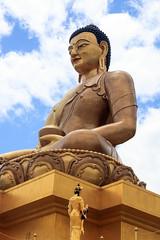 107A1417 (Tarun Chopra) Tags: bhutan gangsofduster