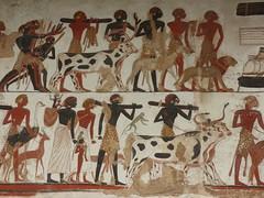 Egyptians Hieroglyphics British Museum London June 2017 H (symonmreynolds) Tags: egyptians britishmuseum london june 2017 hieroglyphics