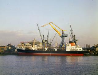 The cargo ship Saxonia at Readhead's shipyard