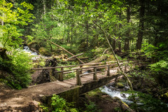 Bridge Over Laughing Waters (writing with light 2422 (Not Pro)) Tags: laughingwatercreek creek stream waterfall bridge washingtonstate sonya77 richborder landscape mountrainiernationalpark silverfallstrail ohanapecosh sunlight green forest