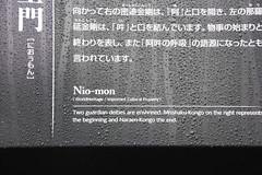 IMG_2643 (normafincher) Tags: japan nikko nikkonationalpark