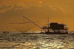 Pescando / Fishing (Marina di Pisa, Tuscany, Italy) (AndreaPucci) Tags: andreapucci canoneos60 pisa tuscany toscana marinadipisa retone fishing net sunset italy italia