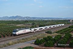 Talgo IV (ɢ. ʙᴇʀᴇɴɢᴜᴇʀ [ ō-]) Tags: montaña verde naranjos 252 252060 talgo talgoiv renfe railroad railway ffcc