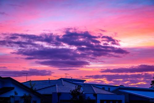 Curlewis Sunrise-1