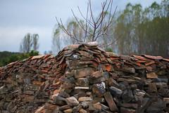 Muro (Oscar F. Hevia) Tags: castrillodelospolvazares león mayo muro pared piedras stones tejas tiles wall astorga castillayleón españa