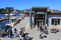 Victoria Harbour Airport (Bill 1.75 Million views) Tags: harbor harbour victoriaharbour victoriaharbor visitors tourists boats planes fishing cruiseships cruise whales whalewatching salishseadream salishsea fishboats innerharbour victoriabc innerharbourt3i 600d