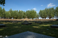Langemark German war cemetery (Raf Debruyne) Tags: debruyneraf debruynerafphotography rafdebruyne canon canoneos5dmk3 canoneos5dmkiii canoneos5dmkill 5dmkiii 5dmarkiii 5d eos mk3 mark3 24105mmf4 24105mm canon24105mmf4 canonef24105mmf4lusm worldwar worldwari westhoek cemetery begraafplaats soldatenfriedhof germanwarcemeteryoflangemark langemark flandersfield