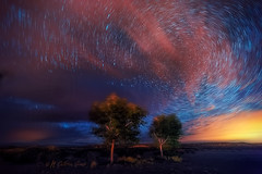 More Moiré (inlightful) Tags: moire moiré d810 stack stars star startrails clouds night trees astronomy astrophotography astrolandscape polaris northstar timestack outdoors nature rural southwest newmexico