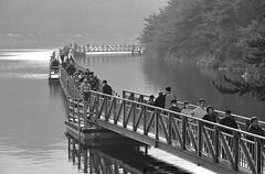 Dulle gil Trail #1 (walking trails) (daniel0027) Tags: handrail leafy freshmorning walkers dullegiltrail strollers lake freshmorningair walkingtrail bw monotone