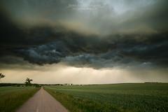 Your storm (Rainer Schund) Tags: your storm sturm stormchasing unwetter germany erfurt rainerschund rain regen wolken clouds cloudporn arcus feldweg thunderstorm thüringen gewitter gewitterzelle schwergewitter hagelzelle hail hagel