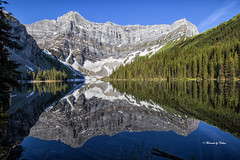 Rawson's Lake (Canon Queen Rocks (1,610,000 + views)) Tags: rawsonslake landscape lake landscapes lakes reflections mountain glaciertrail trees glacier forest water nature kananaskis alberta canada bluesky momentsbycelinecom canon hiking light snow landschaft