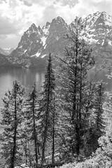Jenny Lake in Black and White (repete7) Tags: grandtetonnationalpark wyoming unitedstates jennylake usa canon6d canon24105l bw blackandwhite