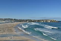 bondi beach (Greg Rohan) Tags: bathers surfers surf sand blue ocean sea bondibeach bondi beach sydney photography d7200 2017