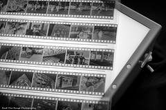 Light Box (Rich Presswood) Tags: fuji fujinon xpro2 fuji35mmf14 digital negative film analogue availablelight lightbox lightroom adobe closeup bw mono monochrome mirrorless fujix kodaktrix trix kodak 35mm