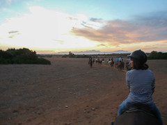 27.06.10 109.jpg (fatwaller) Tags: baléares cheval nature mamifère coucherdesoleil personnes femme europe terrestre animal corinnejobard sunset