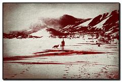 spiaggia onirica (Stefano D'Acunto) Tags: mare spiaggia montagne cane passeggiata scauri minturno texture