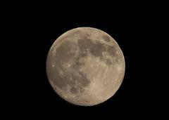 十五的月亮 (luo_wyne) Tags: