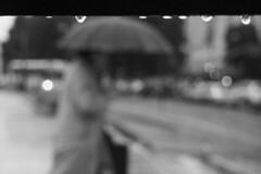(Claudio Blanc) Tags: buenosaires argentina bw bn blackandwhite blancoynegro street streetphotography lluvia rain umbrella paraguas
