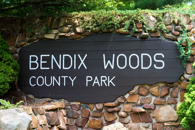 Bendix Woods Nature Preserve - July 4, 2017