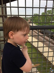"""Paul Watches Trains in Kansas City • <a style=""""font-size:0.8em;"""" href=""""http://www.flickr.com/photos/109120354@N07/35698341215/"""" target=""""_blank"""">View on Flickr</a>"""