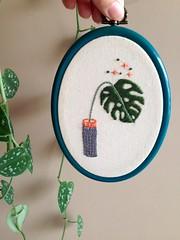 Monstera (Carol Grilo • FofysFactory®) Tags: plant planta costeladeadao monstera carolgrilo fofysfactory bordado embroidery handmade craft brasil quadrinho bastidor hoop