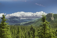 Denali Park, AK  30 (Largeguy1) Tags: approved denalipark ak landscape clouds blue sky mountains green canon 5d mark iii