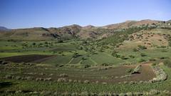 Agricultural Landscape (Hans van der Boom) Tags: holiday vacation southafrica zuidafrika sawadee agriculture landscape maseru lesotho lso