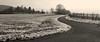 HintergrundDeinProjekt (plaktukas) Tags: winter schnee remstal