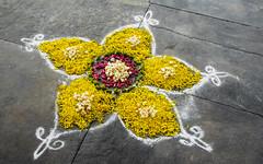 IMG_47673 (Manveer Jarosz) Tags: auroville bharat hindustan india southindia tamilnadu wwoof worldwideopportunitiesonorganicfarms art doorway flowers rangoli rural