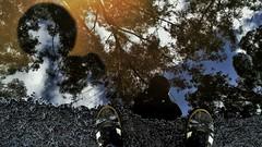 Reflections and shadows (abhishekskumar) Tags: sky monsoonshot naturecool loveshor shoe black cute naturelover skyporn road monsoon waterlove reflection water bluesky tree natureiger shadow nature trees reflections naturelovers nstureaddicts reflectionlovers reflectionstory lovely natureswonder planetearth