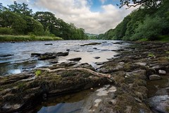on the River Wye (dgmann11) Tags: boughrood wye wyevalley powys wales water rock stick trees