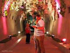 underground-tunnel-floraart_39
