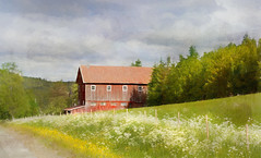 Old barn under the sky (BirgittaSjostedt) Tags: barn architecture building country countrylife sky cloud thunder summer landscape field meaow flower fence forest wood road sweden texture paint brushes birgittasjostedt magicunicornverybest