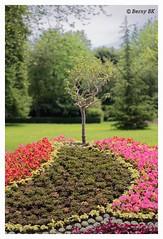 Massif Royal - Parc du chateau de Versailles (bernard78br) Tags: 5dsr canon chateaudeversailles eos france photographie versailles versaillespalace ville