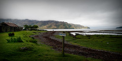 Ain't no Sunshine... (Harleynik Rides Again.) Tags: corran lochhourn glenelg highlands scotland mountains knoydart mist cloud rain damp moist harleynikridesagain nikondf