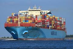 Maersk Edinburgh DST_1195 (larry_antwerp) Tags: maerskedinburgh maersk container rilland netherlands nederland zeeland schip ship vessel 船 船舶 אונייה जलयान 선박 کشتی سفينة schelde 斯海尔德河 スヘルデ川 스헬더 강 رود شلده سخيلده