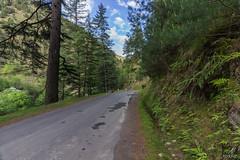"""The roads that we traveled..."" (aliabdullah.176) Tags: kutton neelumvalley kashmir pakistan landscape lahore canon t3i travel"