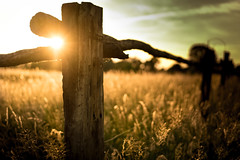 Fenced Friday (--Conrad-N--) Tags: fence friday bokeh dof dry field wood sony sunset a7rm2 shadow summer