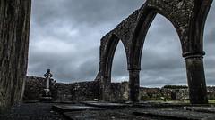 Klosterruine bei Galway (Dioscorea Mexicana) Tags: ruine abbey kloster klosterruine irland düster trüb grau gotisch