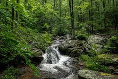 Mountain Stream (Thomas Reese Photography) Tags: helen georgia mountains northgeorgia helengeorgia